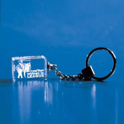 3-D Crystal Subsurface Laser-Engraved Key Chain