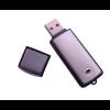 Robin USB Flash Drive