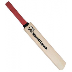 Mini Cricket Bat