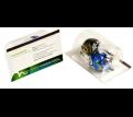 Biz Card Treats with Lindor Balls X 2