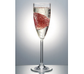 Polysafe Polycarbonate Champagne 170ml