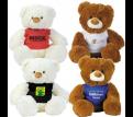 Coconut White, Coco Brown Plush Teddy Bear