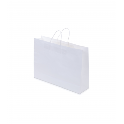 Kraft Paper Bag White Landscape Includes Twisted Paper Handle