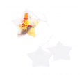 Star Shaped Clear Plastic Ornament