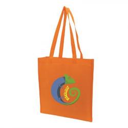 Non Woven Bag V Shape 80gsm – Long Handle