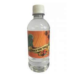300 ML Bottle of Water