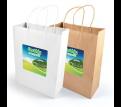 Express Paper Bag