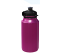 Drink Bottles 650ml